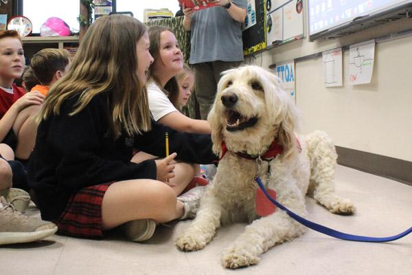 Dude the therapy dog takes in story time with third-graders at Our Lady of Holy Souls School in Little Rock. Dude and his handler Aimee Glasgow make the rounds at school one day a week. (Dwain Hebda photo)